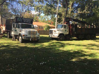 tree care trucks