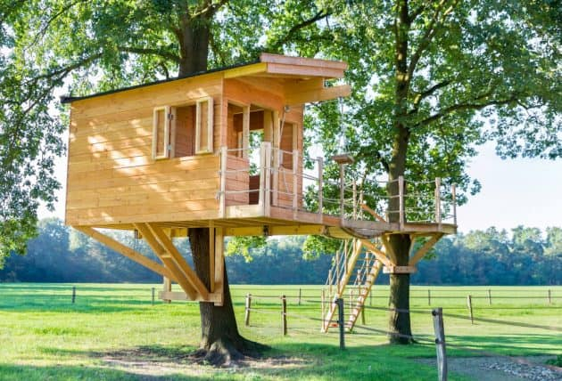 Tree House In Oak Trees